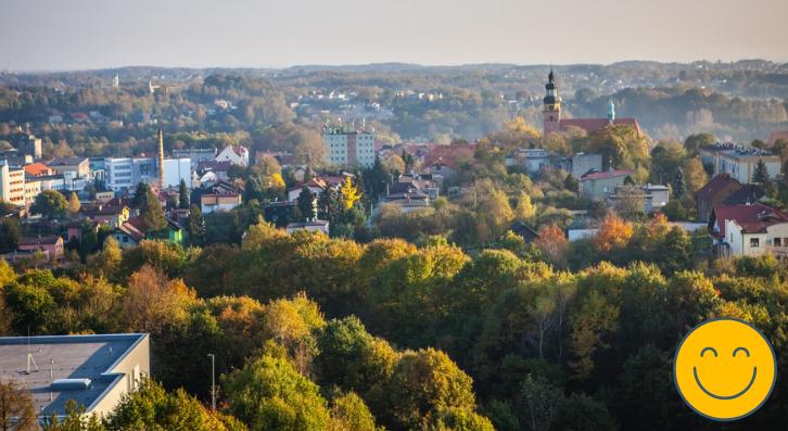 Dotacje do wymiany pieca w Wodzisławiu – uchwała Czyste Powietrze