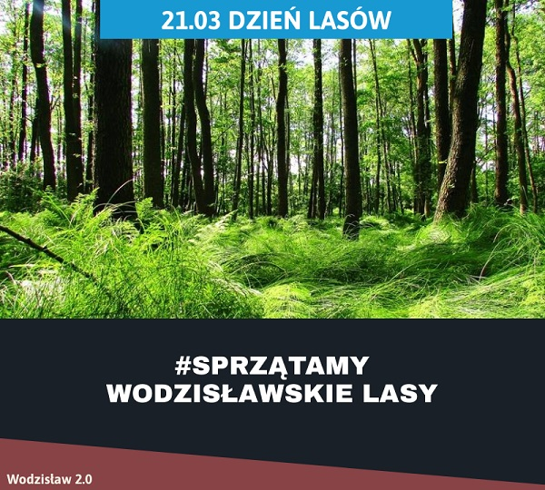 las w wodzisławiu śląskim