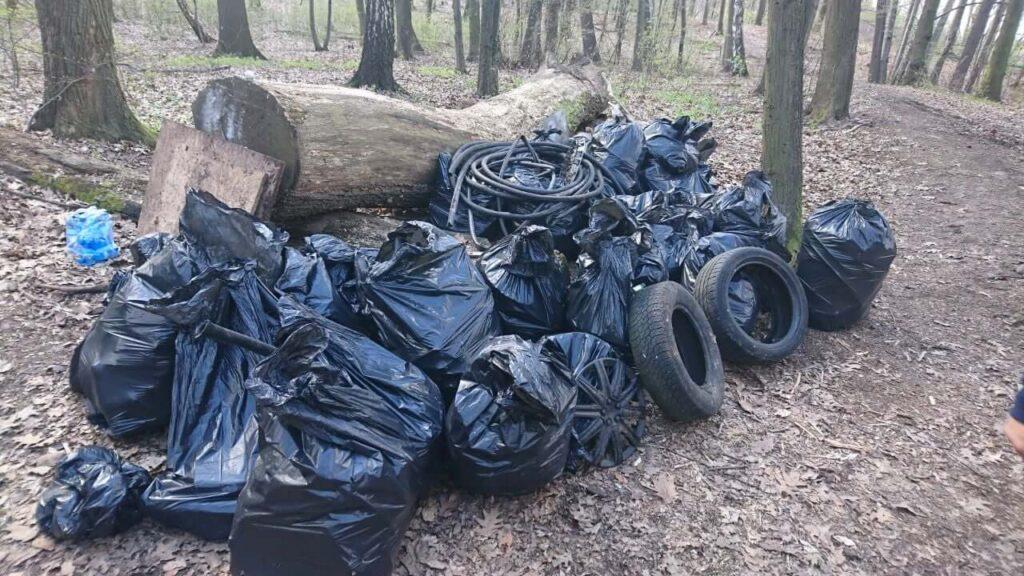 sprzatanie lasu wodzisław śląski dzień ziemi 2021